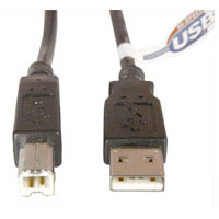 USB 2.0 (A/B) Cable - 6 Feet